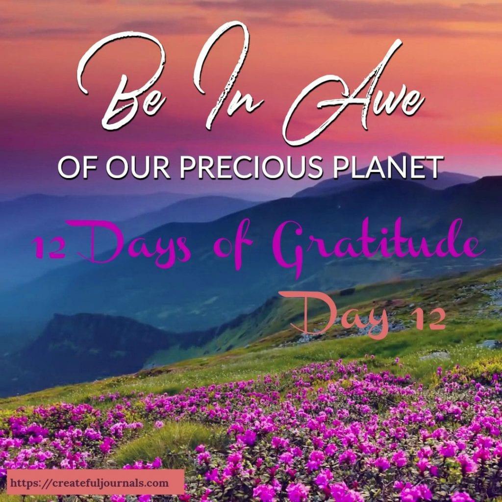 wisdom gratitude