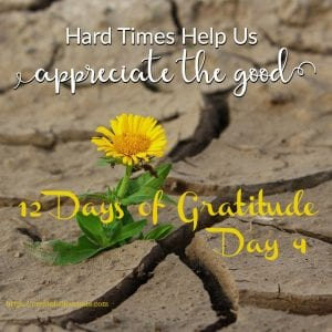Days of gratitude staying tough
