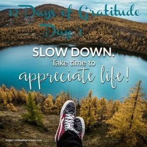 12 Days Gratitude Day 3