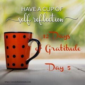 Self reflection gratitude