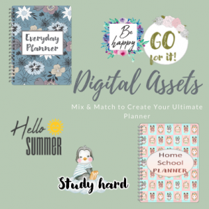 Digital Assets Overview